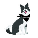 A gray and white illustrated border collie wearing a bandana that says