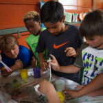students work on a science project at YWCA summer camp