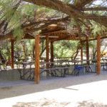 Photo of Mary Ann Dodson Ramada and picnic area