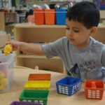 young boy separating objects by color at daycare